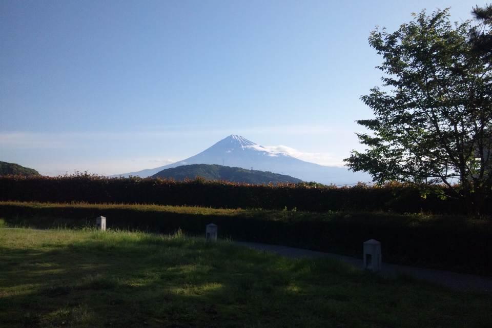 奇跡的に富士山見えた